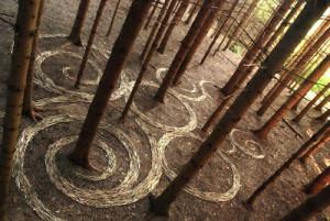 land-art-arboles